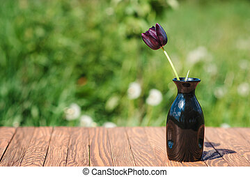 One black tulip in a vase outdoor.