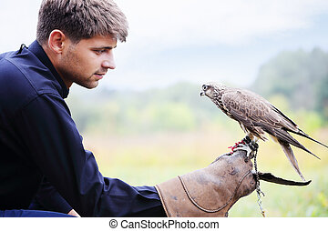 The owner feeds his falcon