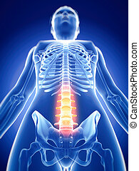 the painful spine