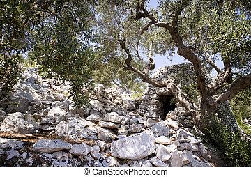 The Pajare of Salento - The Pajare, typical stone building ...