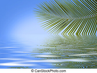palm trees against the blue sky
