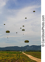 The paratroopers of the Air Force