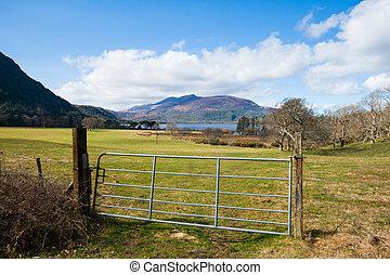 The park surrounding Muckross house in Kerry, Ireland
