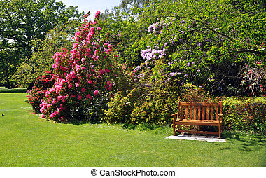 Pretty bushes and garden seat in the English style botanical gardens in Christchurch, New Zealand.