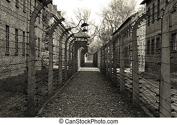 The path between the fences of barbed wire in Auschwitz ...