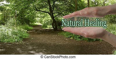 Female parallel hands with the words Natural Healing floating between on a green woodland path background depicting the path to natural healing
