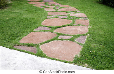The path way in the garden