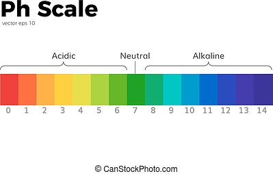 The pH scale Universal Indicator pH Color Chart diagram acidic alkaline values common substances vector