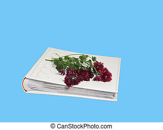 The photograph album with a bouquet of claret flowers on a blue