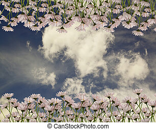 The picturesque bouquet of daisies on a background of blue sky with clouds