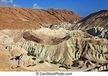 The picturesque canyon in the rocky desert