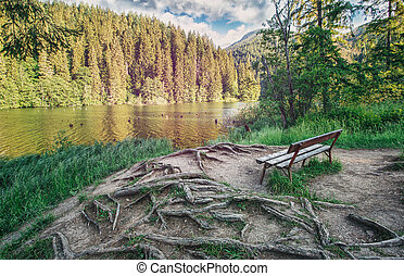 The place for rest. A quiet place for reflection in the park near the lake.