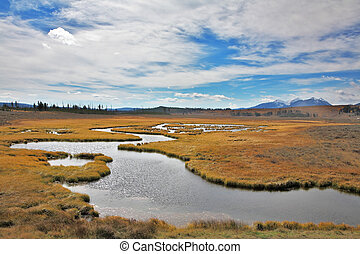The plain and stream in Yellowstone national park