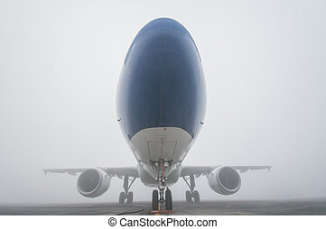 the plane in the fog