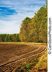 The ploughed field at edge of a forest