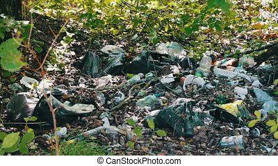 The pollution of the environment by plastic and garbage. Pollution of garbage increases. Garbage is dumped in open available places or forest.