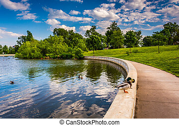 The pond at Patterson Park in Baltimore, Maryland.