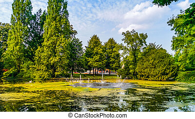 the pond with water fountains in the city park Valkenberg of breda, Nature scenery of the Netherlands