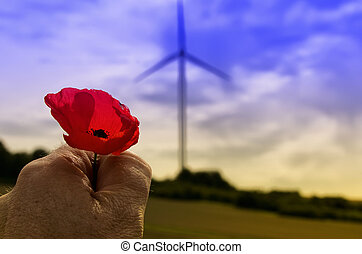 the poppy and the wind turbine