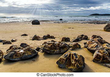 The popular tourist attraction of Moeraki boulders is a ...
