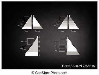 The Population Pyramids Graphs with