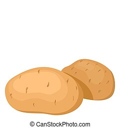 The potatoes. Vector illustration. Isolated on white...
