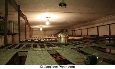 The prison bunks