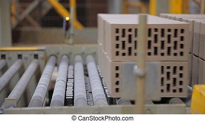 The production of bricks - Brick factory. Bricks are moving...