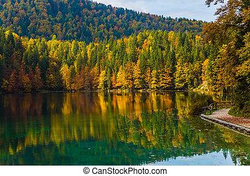 The quiet lake Lago de Fusine - Scenic reflections of...