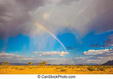 The rainbow over the desert