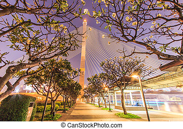 The Rama VIII bridge at night in Bangkok, Thailand