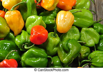 the real hot chilli peppers from mexico