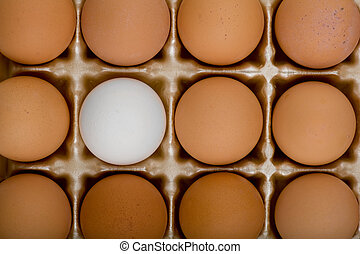 The Rebel - Image of an out of place egg going against the...