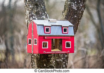 The red birdhouse on a tree in springtime forest