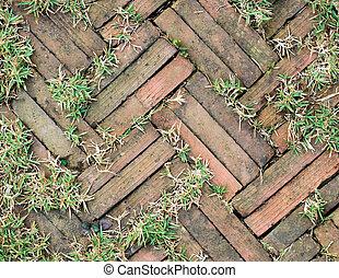 The red brick walkway in garden with grass growing up between and around stones