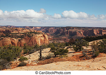 The red sandstone canyon - Historical Relic - Navajo...