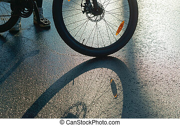 the reflection and shadow of a Bicycle wheel, bike on wet roads