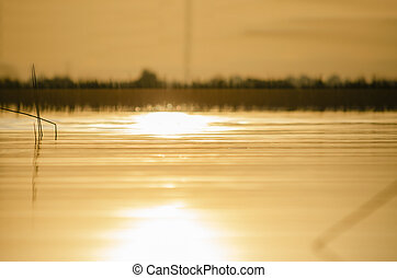 The reflection of the sun on the water surface
