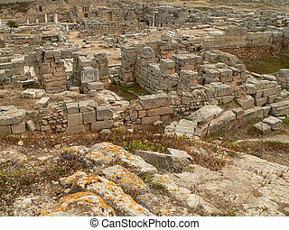 the remains of an ancient city forming a famous archaeological site