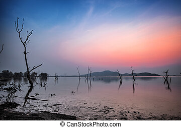 The reservoir and dead tree silhouette with sunset sky.