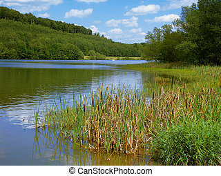 Kinzig dam - The reservoir Kinzig dam is located at Bad...
