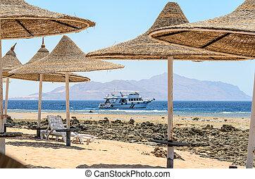 The resort in Egypt