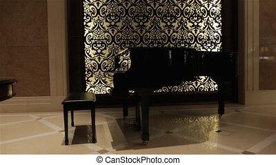 The Retro Black Piano - The retro black piano luxury hall...
