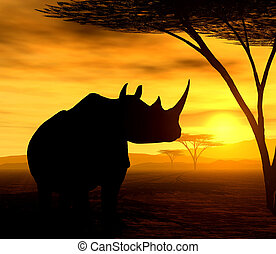 The Rhino - Illustration of an african rhinoceros