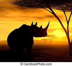 The Rhino - Illustration of an african rhinoceros