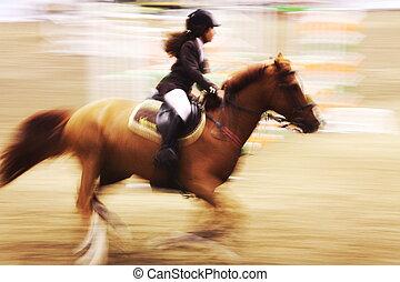 riding horse - the riding horse