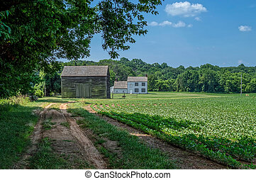 The Road Home - A dirt road leads to this old homestead in...