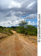 The road in the African savannah