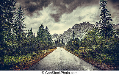 The road in the mountains on a rainy overcast day.