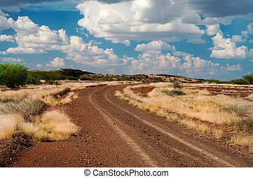 The road in the savannah